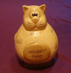 Fat Cat Savings Pot
