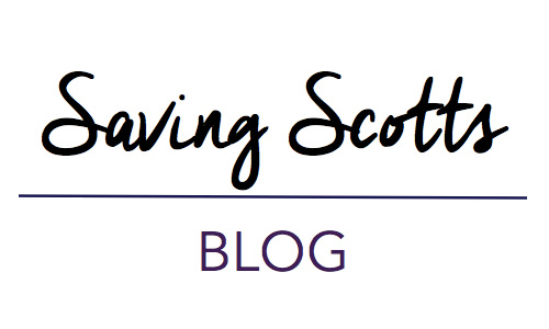 Saving Scotts Blog - co-hosting Financially Savvy Saturdays