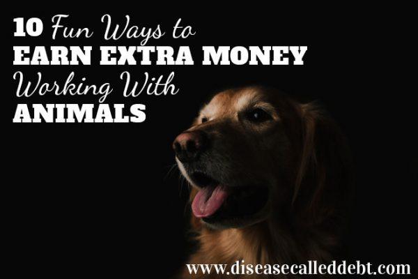 10 fun ways to earn money working with animals - Disease Called Debt