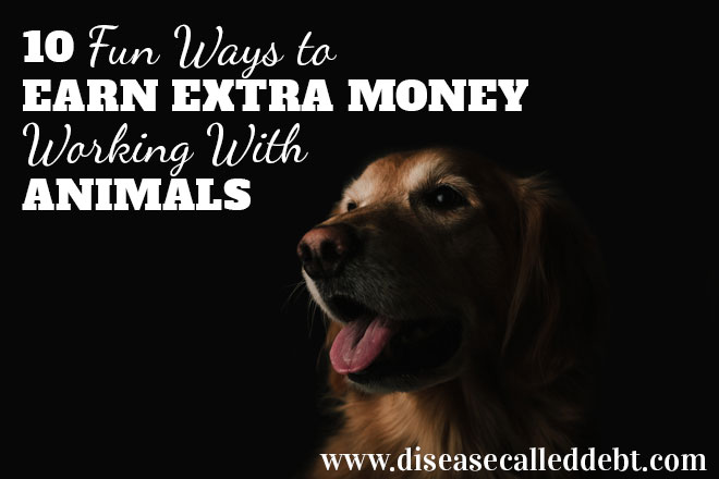 10 fun ways to earn money working with animals - Disease Called Debt