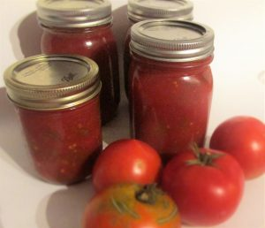 my-frugal-ways-salsa-that-i-canned